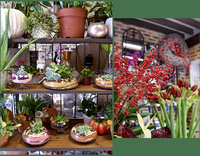Fleuriste à Luzarches : confiez-nous le soin de votre décoration florale
